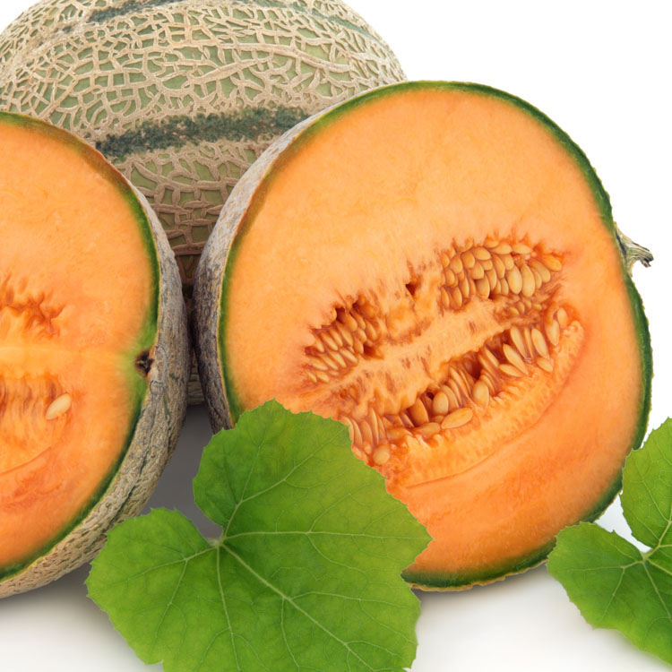Jumbo West Side Cantaloupes